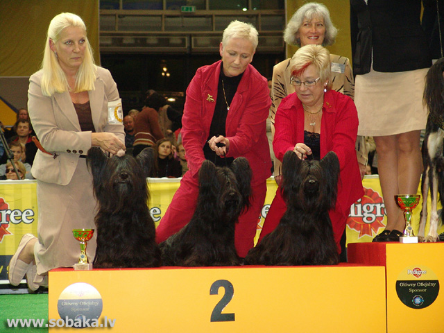 Skaiterjers 