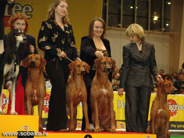 Rodēzijas ridžbeks 